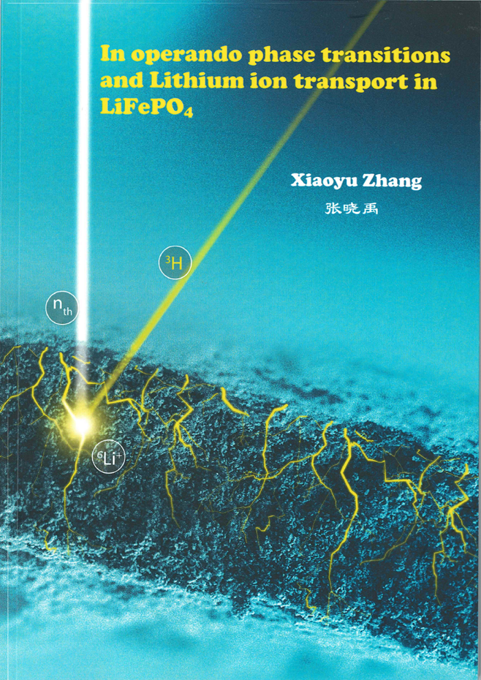 PhDcoverZhang_scan700px.png
