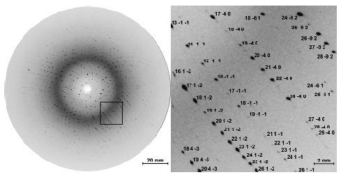 Picosecond Crystallography: Myoglobin in Action