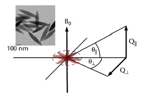 Transmission electron micrograph of spindle-shaped particles and schematic view of the scattering geometry of an ensemble of spindles aligned perpendicular to an external magnetic field