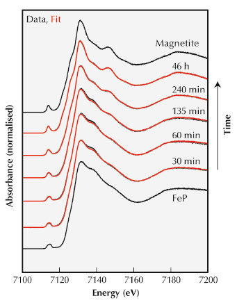 X-ray absorption spectra from various stages in the mineralisation process