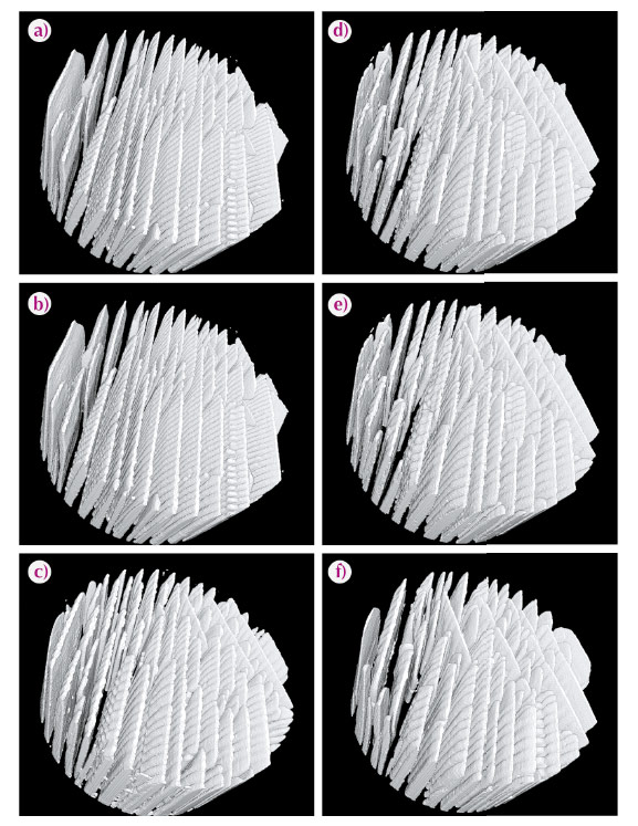 Time-lapse sequence of ice crystals morphology