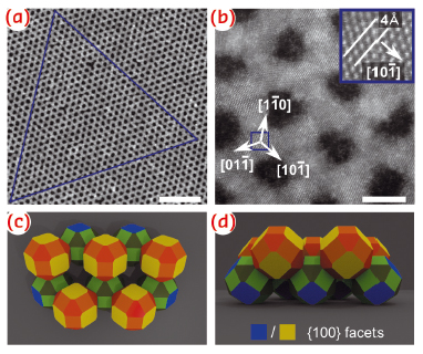 Single-crystalline PbSe honeycomb structures