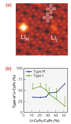 STM topography of a CuPc adlayer with two doped complexes of different types