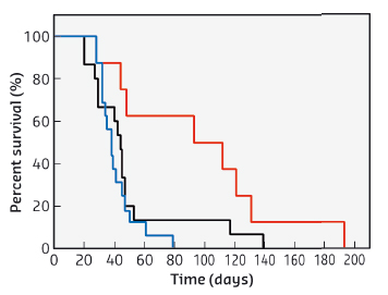 Survival curves of 9LGS bearing rats treated by MRT, DOTAREM and AGuIX nanoparticles