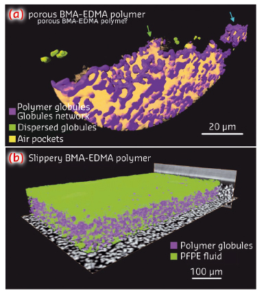 Volume rendering of the local mass density of the porous BMA-EDMA surface