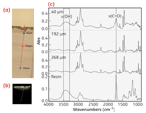 SR µFTIR study of the oxidation of an ABS model film
