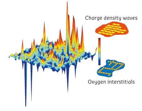 Spatial anti-correlation of charge density wave order