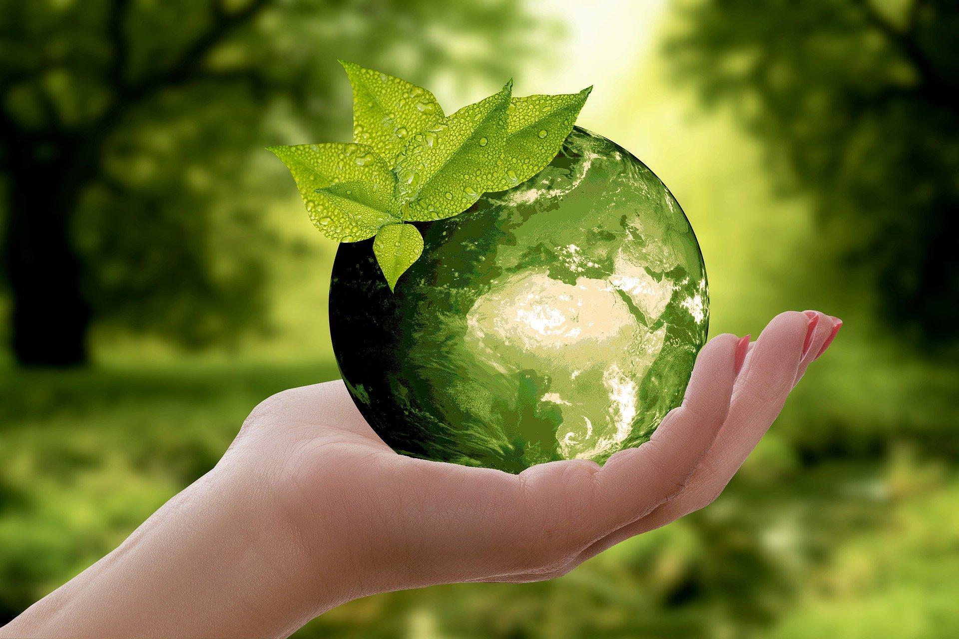 V3-Earth Day-nature-3289812_1920.jpg