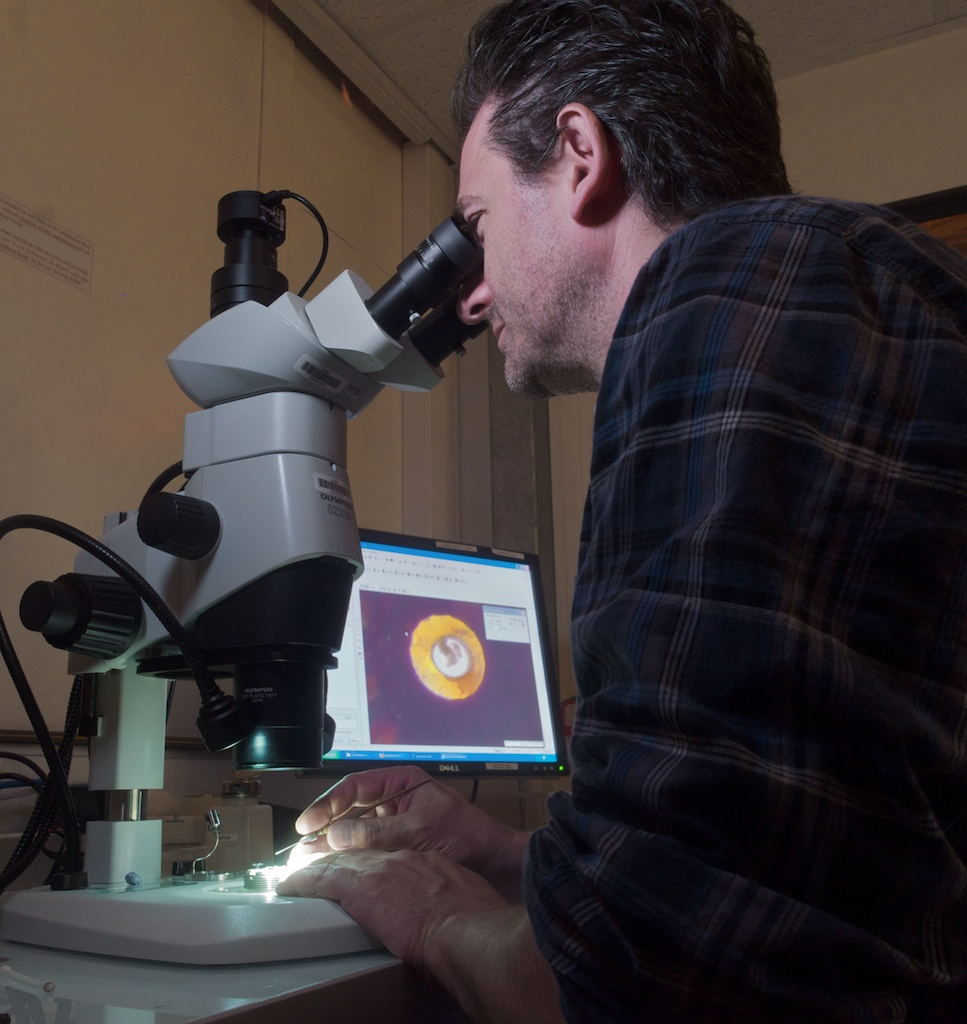 Denis Andrault setting up a diamond anvil cell