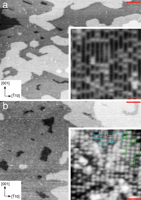 STM images of the TiO2(110) surface before and after immersion in liquid water