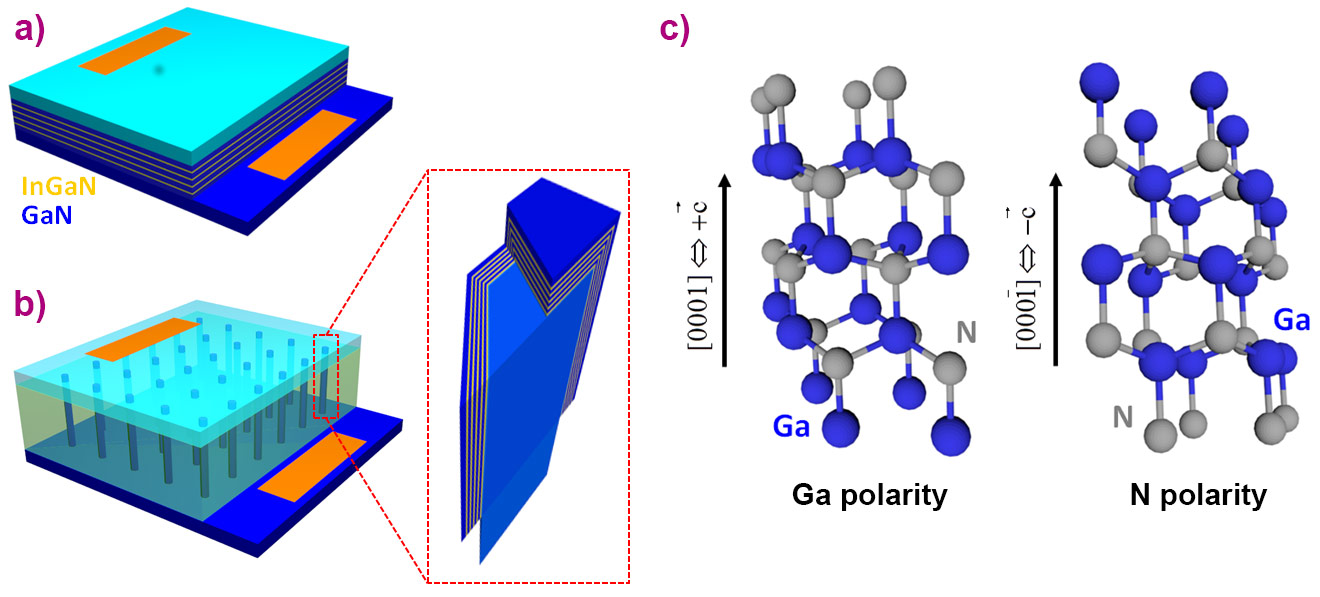 Polarity domains in GaN wires mapped at the nanoscale