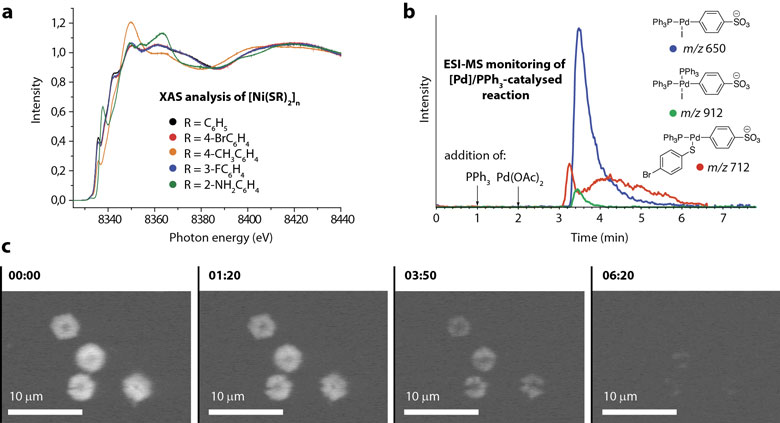 Revealing the nature of reactive species in chemical transformations with nano-structured reagents
