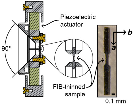 Sketch of the piezoelectric-based strain apparatus and photo of the sample.