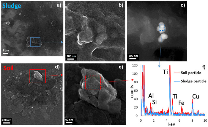 TEM analyses and energy-dispersive X-ray microanalysis of the TiO2 particles present in sludge and soil.