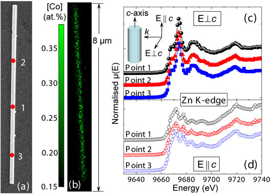 SEM image, elemental map for Co, and Zn K edge XANES spectra for a Co-implanted nanowire.