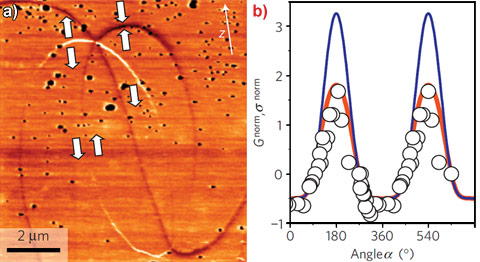 c-AFM image of two neighbouring structural singularities of ErMnO3 and angular dependence of the normalised conductance