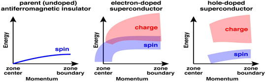 Schematic of spin and charge excitations in the copper oxides.