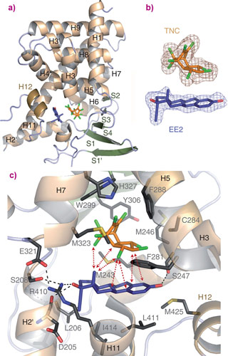 The structure of PXR bound to trans-nonachlor and 17a-estradiol