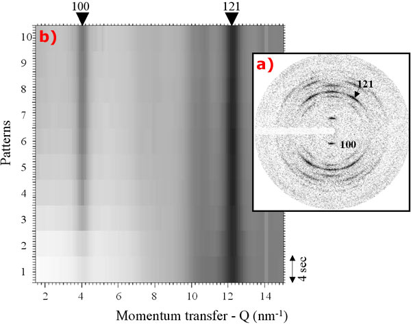 fibre diffraction pattern of a hydrated starch granule