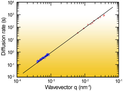 q-dependent diffusion rate for silica particles in water.
