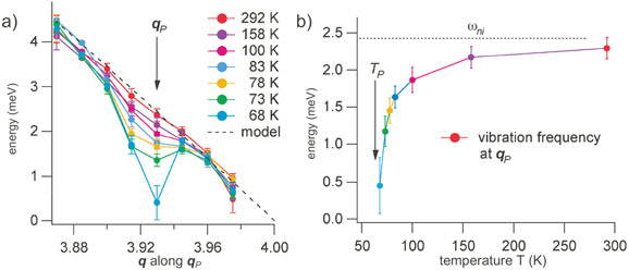 Phonon dispersion across the charge density wave qP and vibration frequency at qP as a function of temperature down to the transition temperature TP.