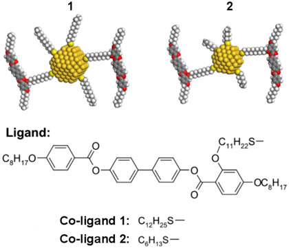 Gold nanoparticles coated with mesogens and alkylthiols